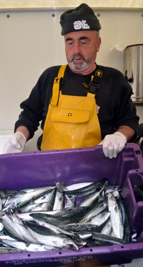 Stena Line - Johnny King selling fish at Clifden market in Connemara