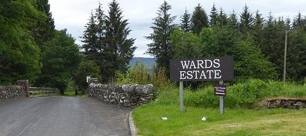 wards 11.jpg 2
