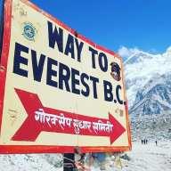 Petra Everest sign