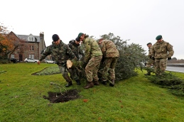 Pictured: Royal Marines and their Dutch counterparts deliver a Christmas tree to Rhu. HMNB Clyde has donated Christmas trees to several communities around Argyll & Bute. The trees were cut from MoD land by Babcock and delivered by Santa's little helpers; members of 43 Commando Fleet Protection Group Royal Marines.