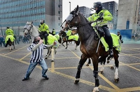 POLICE HORSES ATTACKED BY FOOTBALL THUGS